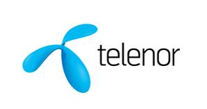 partners-telenor-2